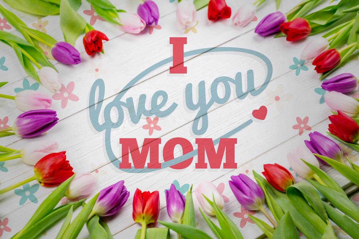Tulip;Pure;Nature;Plant;Flower;Bloom;Blooming;Beautiful;Natural;Blossom;Delicate;Petal;Beauty;In Bloom;Fresh;Freshness;Springtime;Table;Desk;Floral;Pattern;Wallpaper;Mothers Day;Love;Design;I Love You Mom;Red;Blue